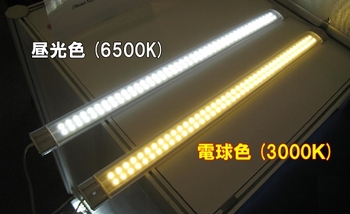 Img56055208