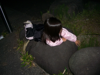 201065_076_2