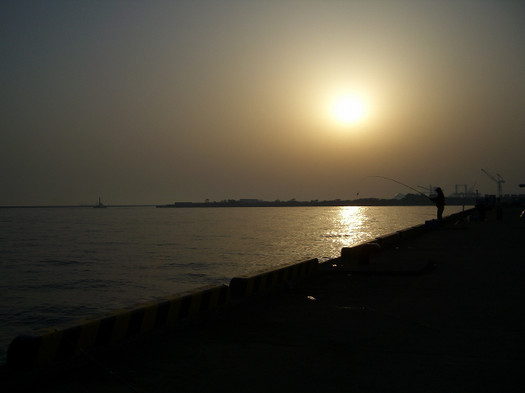 201053_043