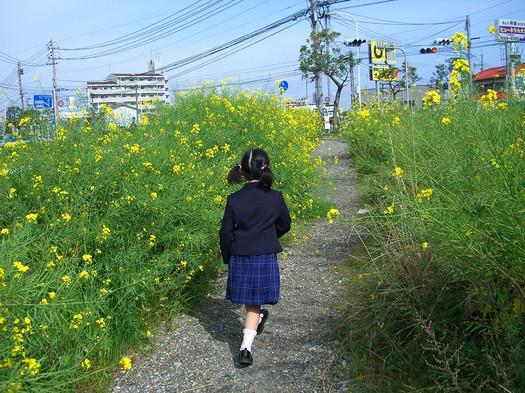 2008411_010